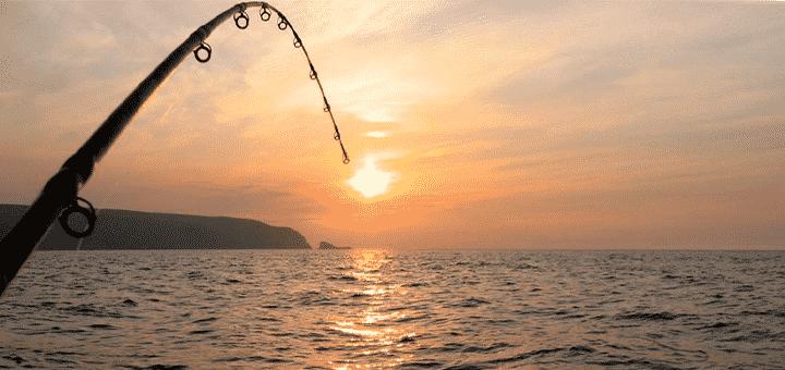 pesca na lancha